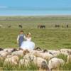 旅拍青海湖仙境婚纱照