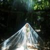 森林婚纱照  附上选婚纱影楼工作室攻略