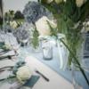 我的Tiffany蓝草坪婚礼