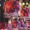 紫色花海 婚礼的照片出来了
