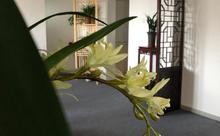 俏喜鹊中式婚礼文化馆