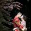 【婚礼纪录】圆满结束