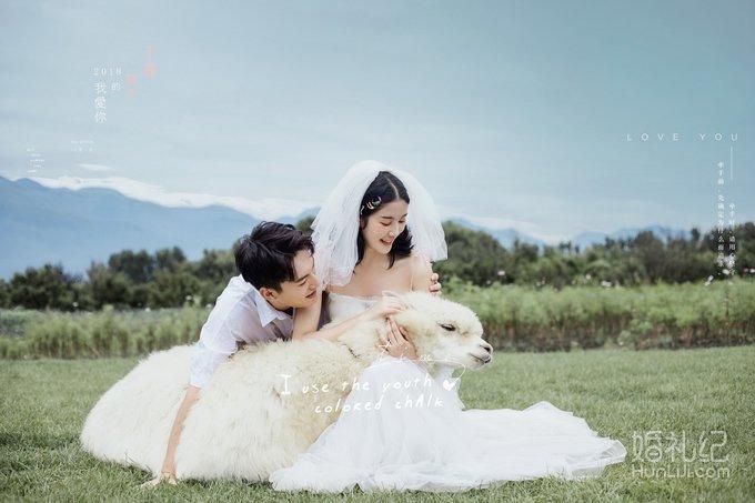 为了萌萌哒的羊驼,专跑大理去拍婚纱照!🐑你们去大理拍为了什么?