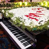 婚礼背景音乐钢琴曲大全