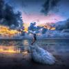 油画风婚纱照美腻 低价普吉岛旅拍太划算