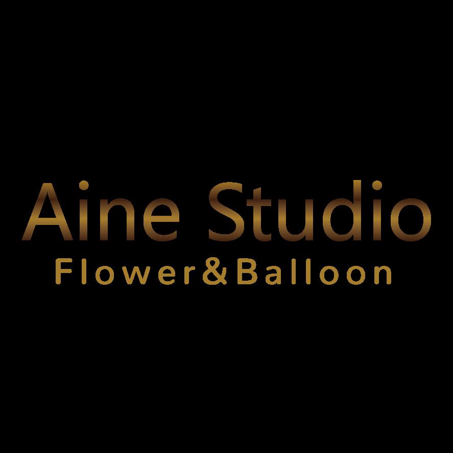 Aine Studio