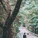 浩信百年摄影