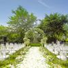 我的草坪婚礼&花海里的婚纱照—上图!