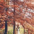 #外景婚纱照#留住秋天的美好