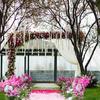 婚礼布置&大婚当天——流程记录