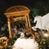 在芦苇荡漾的初夏夜的森系婚礼
