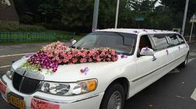 【豪華婚車裝飾】