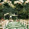 暖色调草坪婚礼 环游欧亚大陆80天终点