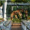 当橙色遇到海军蓝的撞色婚礼--爱在罗兰湖