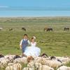 在青海湖和一大群牛羊合影,还有沙漠、草原...