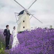 西站新新娘婚纱摄影