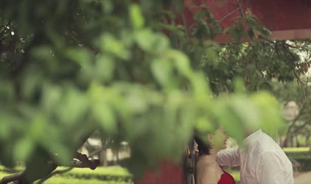 经典主题婚礼策划视频