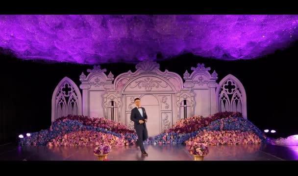 爱恋城堡主题--婚礼司仪米杰现场主持视频