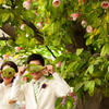 绿色草坪间的婚纱照~