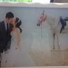 肉肉新娘的马场婚纱片~~