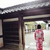 带着婚纱去旅行-花見の日本关西