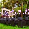辛苦劳累就为这一天,我的美梦紫色户外草坪婚礼