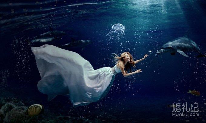 水下最快的动物
