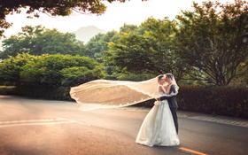 江苏-杭州 杭州-江苏 婚纱和婚礼交给我们【婚礼跟拍】