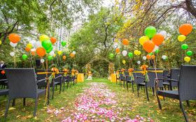 【天禧天成婚礼】户外维尼熊主题橙色系婚礼