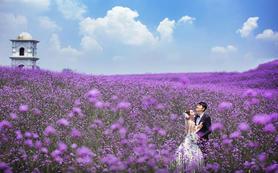 【金夫人】 国内最大熏衣花海,尊享普罗旺斯的浪漫