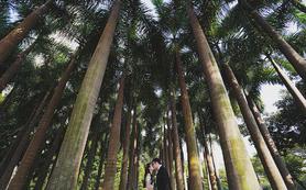 【婚礼必备套餐】双机摄影+双机摄像+送早拍晚播