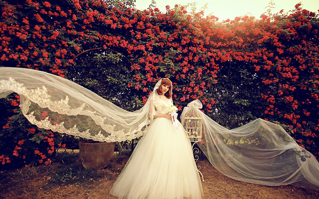 花海婚紗照高清圖片 圖片合集圖片