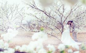 唯美韩式系列婚纱照 不限服装造型