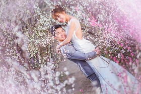 【婚纱照客片】南京樱花外景婚纱照作品