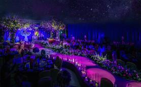 【转角遇到爱】新森系紫罗兰主题婚礼-含四大金刚