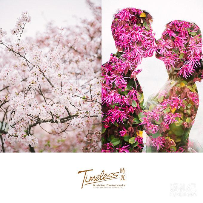 晴川假日户外婚礼|樱花树下的爱情