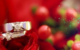 5D高清婚礼摄影录像三机位-特惠档