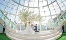 【圣诞特惠套系】双机位婚礼摄影专家档