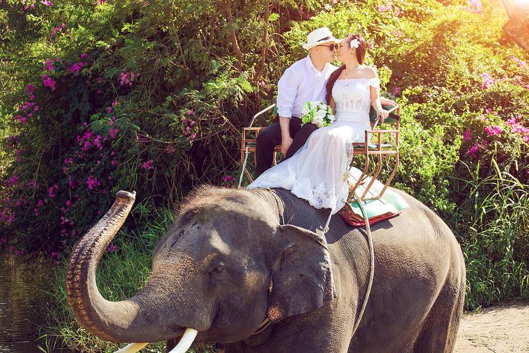 泰国 客片欣赏