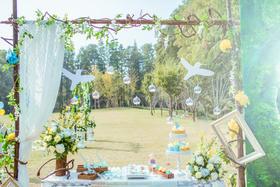 户外简约森系草坪婚礼
