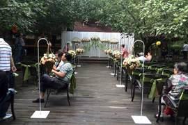 百年好合核桃林婚礼