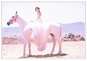 骑马婚纱摄影海边的骑士与公主