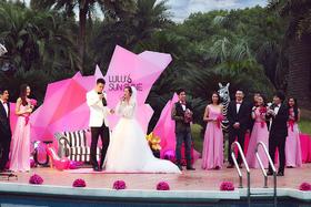 蜜色之恋——时尚创意婚礼