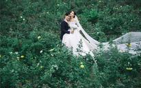 彩寐之韩式花海婚纱照