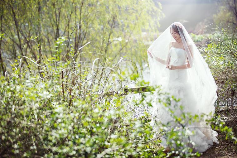 壁纸 成片种植 风景 婚纱 婚纱照 植物 种植基地 桌面 760_507
