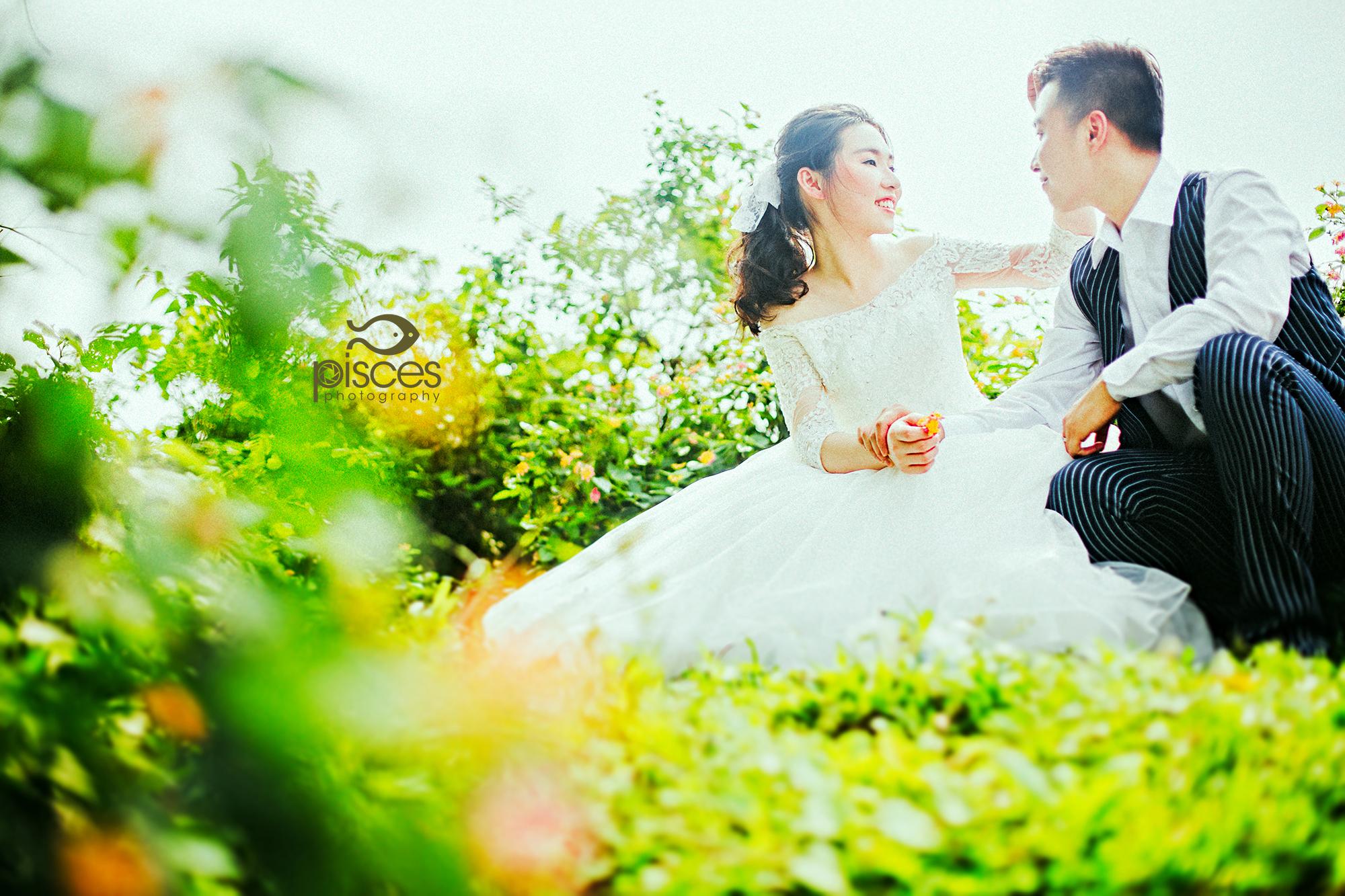 壁纸 成片种植 风景 婚纱 婚纱照 植物 种植基地 桌面 2000_1333