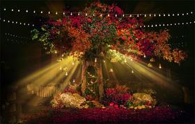 Darling高端定制森系婚礼风-自由之树