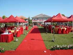 简约室外婚礼-红