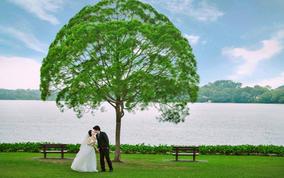 新加坡婚纱新开户送彩金网站大全