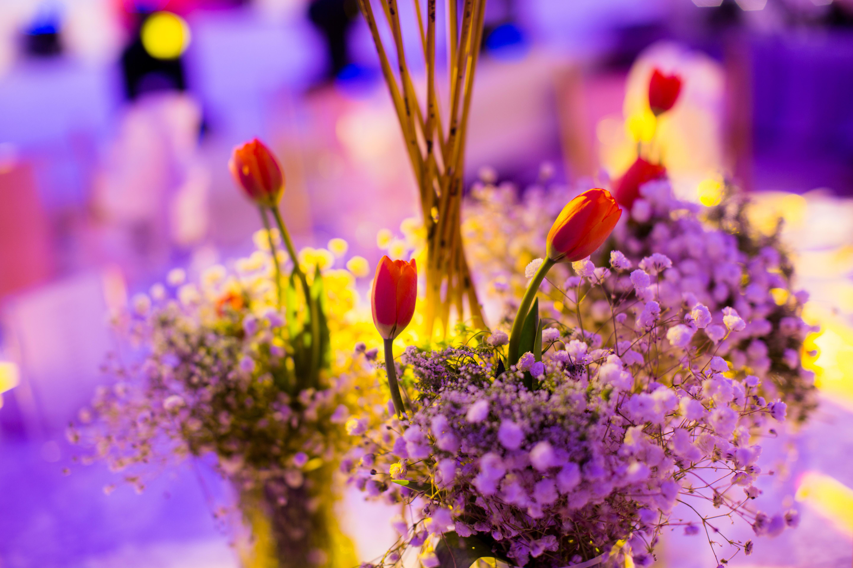背景婚礼舞台橙色婚礼婚庆布置巴洛克主题婚礼橘色婚礼欧式巴洛克
